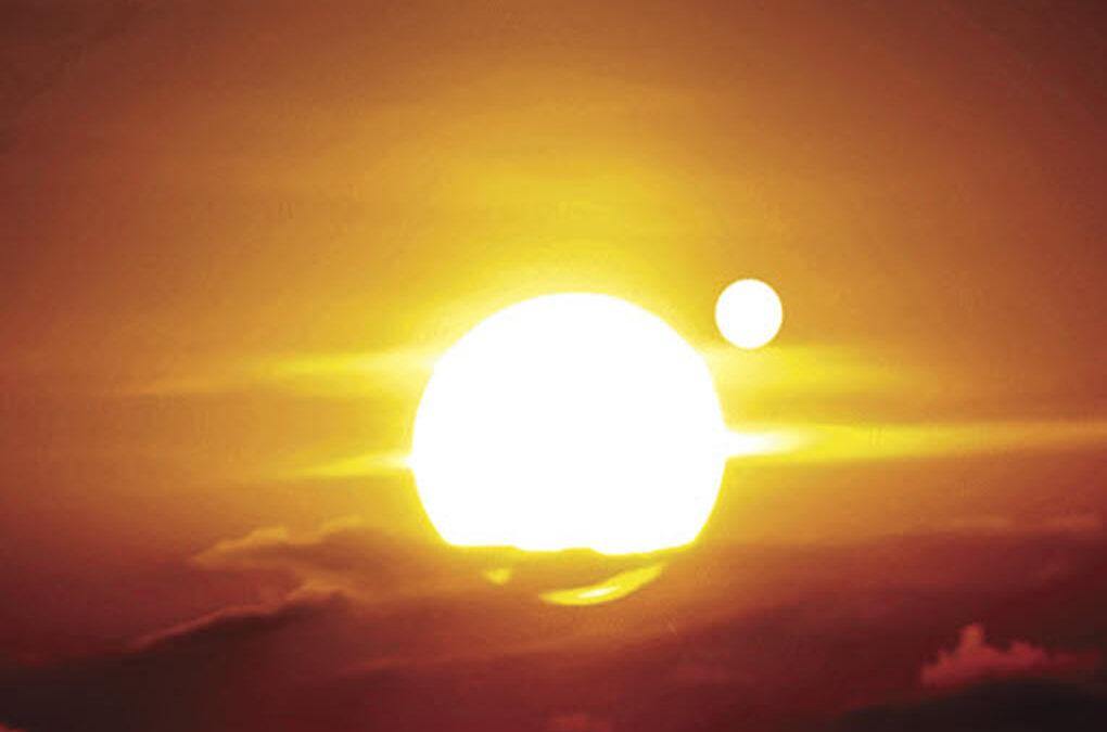 Surviving the Planet X Tribulation: Signed Paperback